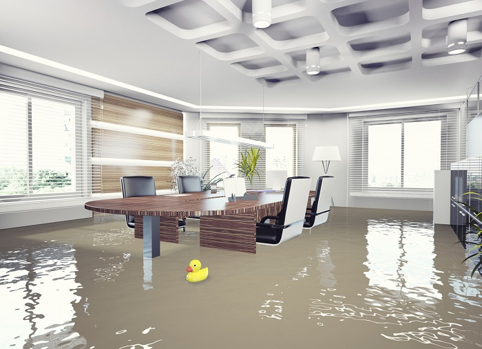 Flooded Conference Room